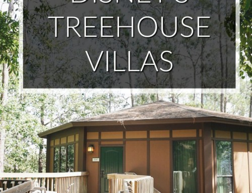 Disney's Treehouse Villas Review