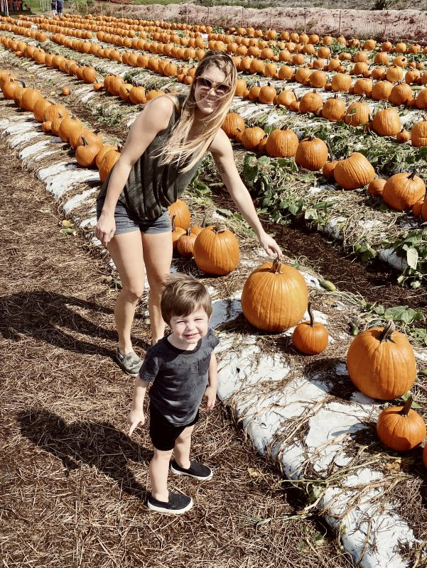 Bedner's Pumpkin Patch // Fun pumpkin patch photos!