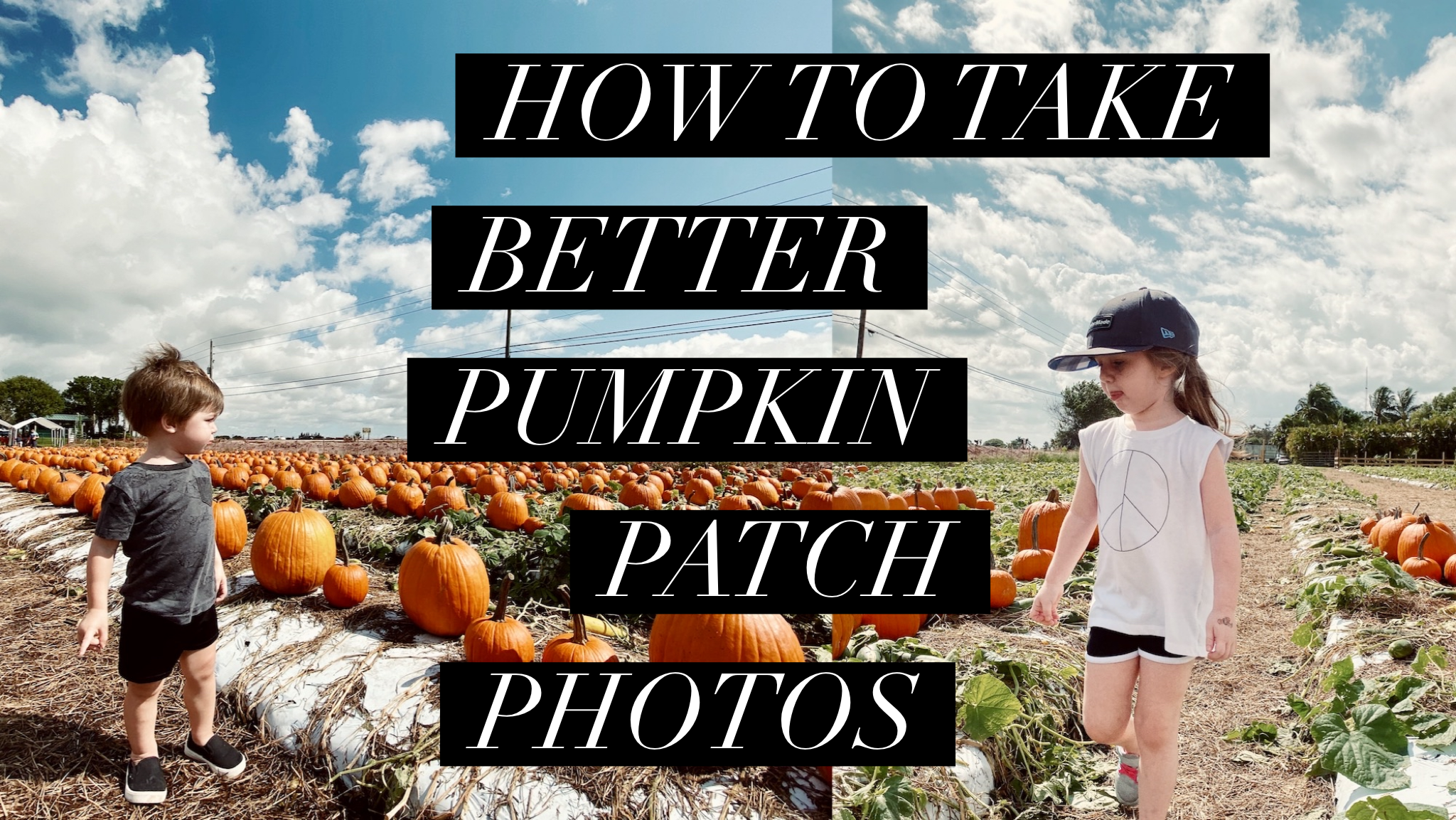 How to take better photos at the pumpkin patch